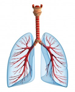 ARDS, acute respiratory distress syndrom, ards causes, lungs