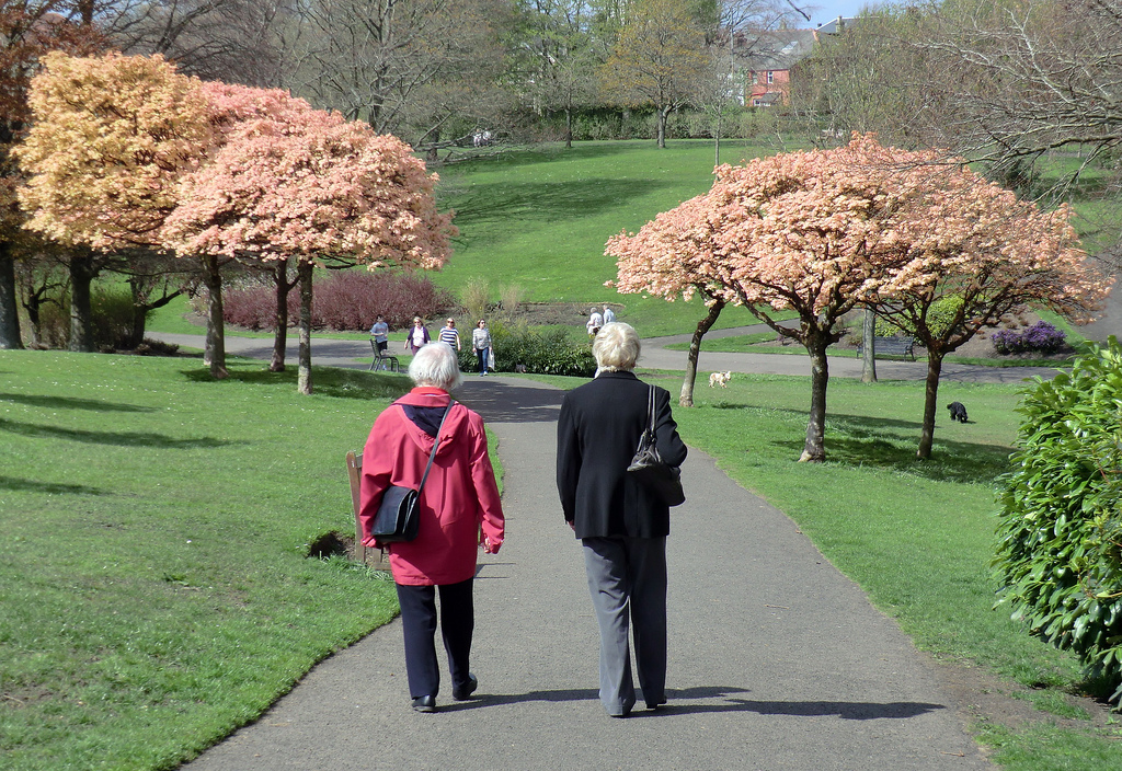 Women Walking with Pink Peach Trees